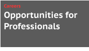 Opportunities for Professionals Careers